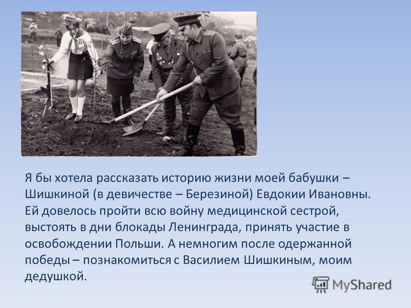 Я бы хотела рассказать историю жизни моей бабушки – Шишкиной (в девичестве – Березиной) Евдокии Ивановны. Ей довелось пройти всю войну медицинской сестрой, выстоять в дни блокады Ленинграда, принять участие в освобождении Польши. А немногим после оде