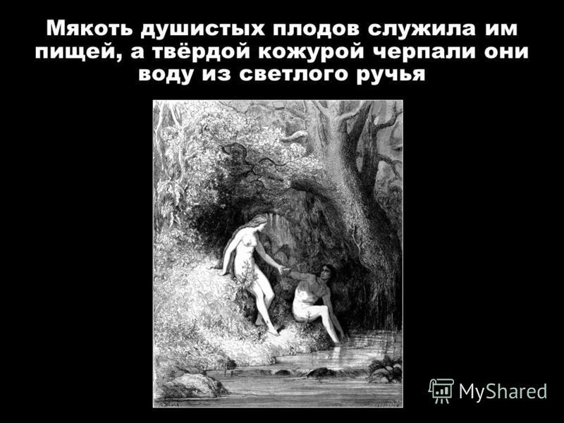 Мякоть душистых плодов служила им пищей, а твёрдой кожурой черпали они воду из светлого ручья