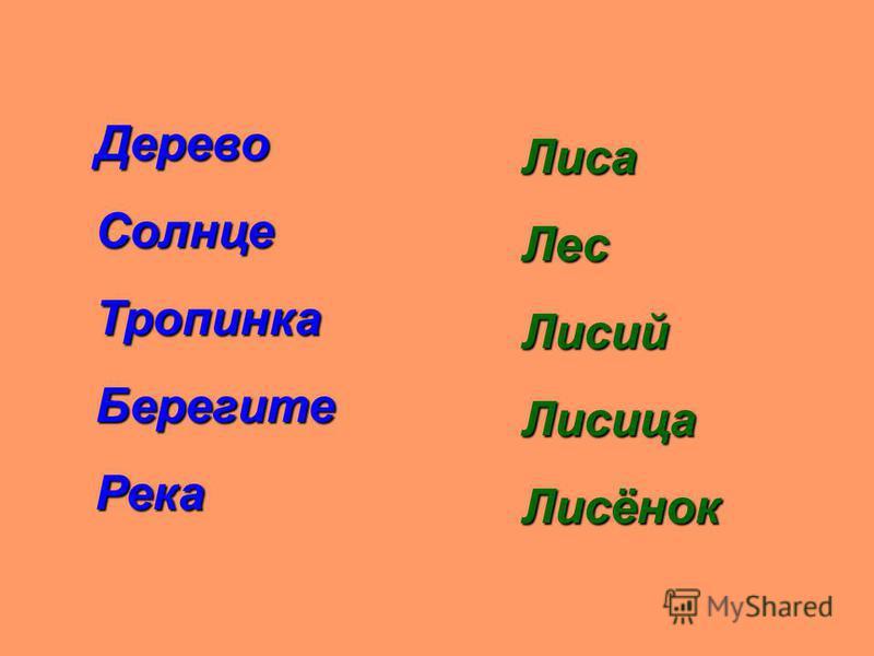 ДеревоСолнцеТропинкаБерегитеРека ЛисаЛесЛисийЛисицаЛисёнок