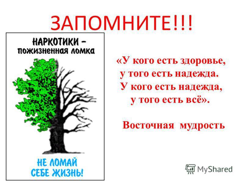 ЗАПОМНИТЕ!!! «У кого есть здоровье, у того есть надежда. У кого есть надежда, у того есть всё». Восточная мудрость