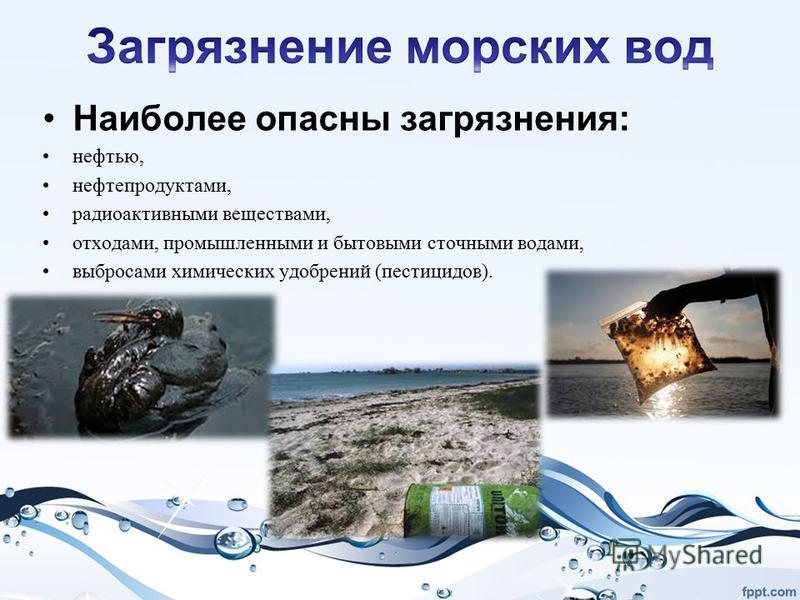 Наиболее опасны загрязнения: нефтью, нефтепродуктами, радиоактивными веществами, отходами, промышленными и бытовыми сточными водами, выбросами химических удобрений (пестицидов).