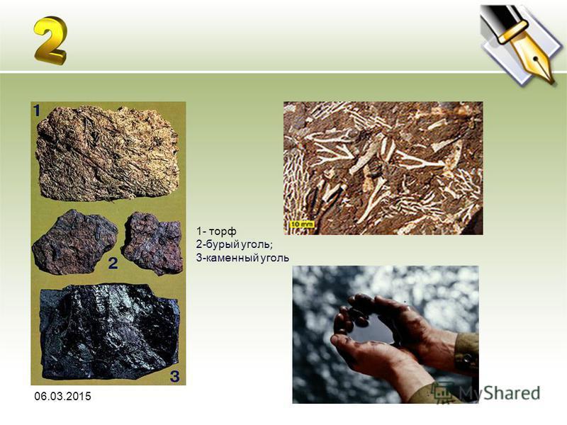06.03.2015 1- торф 2-бурый уголь ; 3-каменный уголь