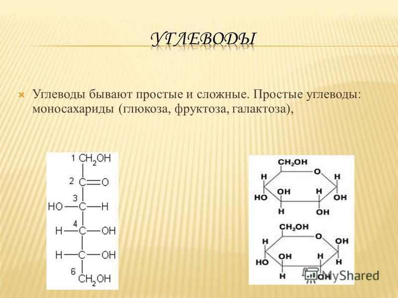 Углеводы бывают простые и сложные. Простые углеводы: моносахариды (глюкоза, фруктоза, галактоза),