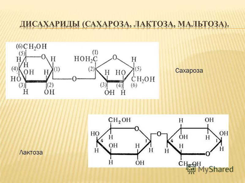 Сахароза Лактоза