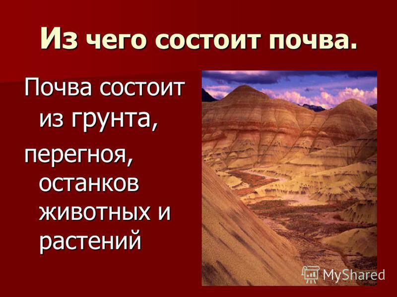 Из чего состоит почва. Почва состоит из грунта, перегноя, останков животных и растений
