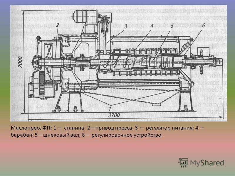 Маслопресс ФП: 1 станина; 2 привод пресса; 3 регулятор питания; 4 барабан; 5 шнековый вал; 6 регулировочное устройство.
