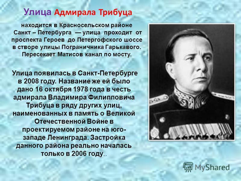 Улица появилась в Санкт-Петербурге в 2008 году. Название же ей было дано 16 октября 1978 года в честь адмирала Владимира Филипповича Трибуца в ряду других улиц, наименованных в память о Великой Отечественной Войне в проектируемом районе на юго- запад