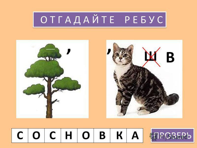 О З Е Р К И С У З Д А Л Ь С К И Е О З Ё Р А 3 3