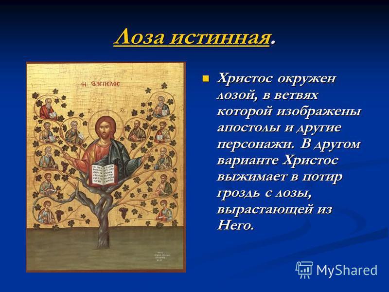 Лоза истинная Лоза истинная. Лоза истинная Христос окружен лозой, в ветвях которой изображены апостолы и другие персонажи. В другом варианте Христос выжимает в потир гроздь с лозы, вырастающей из Него.