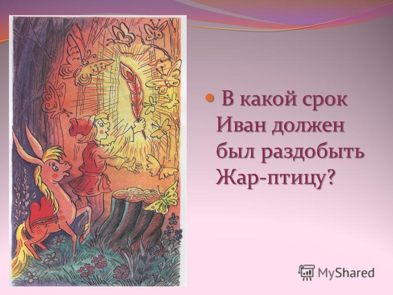 В какой срок Иван должен был раздобыть Жар-птицу? В какой срок Иван должен был раздобыть Жар-птицу?