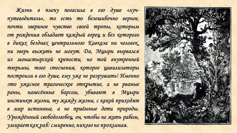 Жизнь в плену погасила в его душе «луч- путеводитель», то есть то безошибочно верное, почти звериное чувство своей тропы, которым от рождения обладает каждый горец и без которого в диких безднах центрального Кавказа ни человек, ни зверь выжить не мог