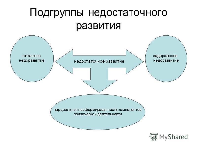 Подгруппы недостаточного развития недостаточное развитие задержанное недоразвитие тотальное недоразвитие парциальная несформированность компонентов психической деятельности