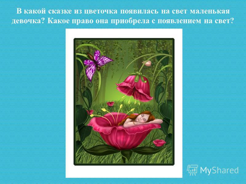 В какой сказке из цветочка появилась на свет маленькая девочка? Какое право она приобрела с появлением на свет?