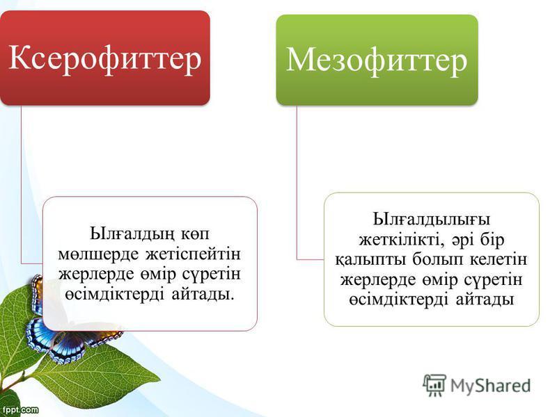 Ксерофиттер Ылғалдың көп мөлшерде жетіспейтін жерлерде өмір сүретін өсімдіктерді айтады. Мезофиттер Ылғалдылығы жеткілікті, әрі бір қалыпты болып келетін жерлерде өмір сүретін өсімдіктерді айтады