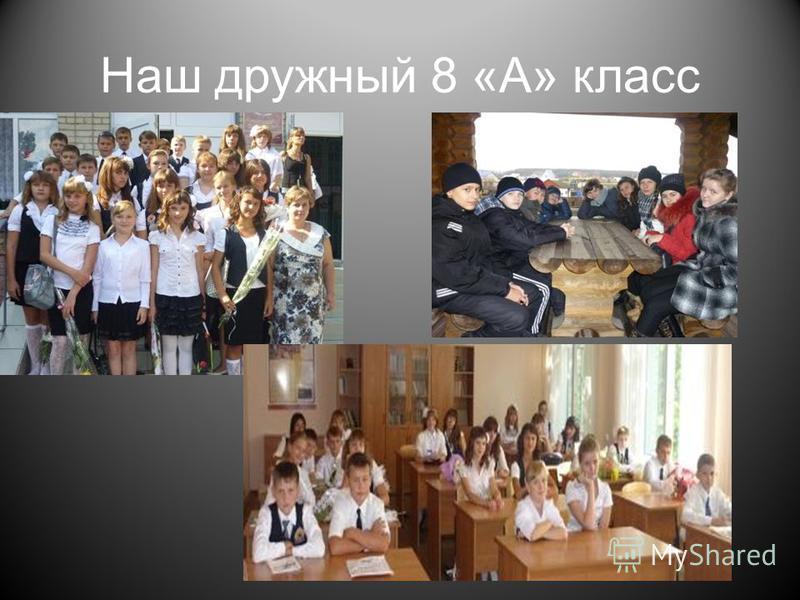 Наш дружный 8 «А» класс