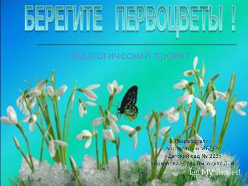 Разработали : воспитатели МБДОУ «Детский сад 223» Кирьянова Н. М., Высоцкая Л. Н. Педагогический проект