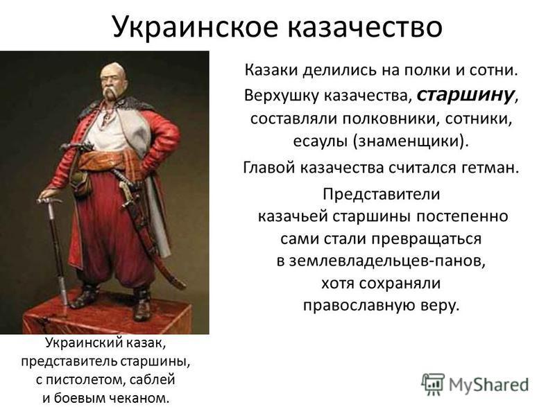 Украинское казачество Казаки делились на полки и сотни. Верхушку казачества, старшину, составляли полковники, сотники, есаулы (знаменщики). Главой казачества считался гетман. Представители казачьей старшины постепенно сами стали превращаться в землев