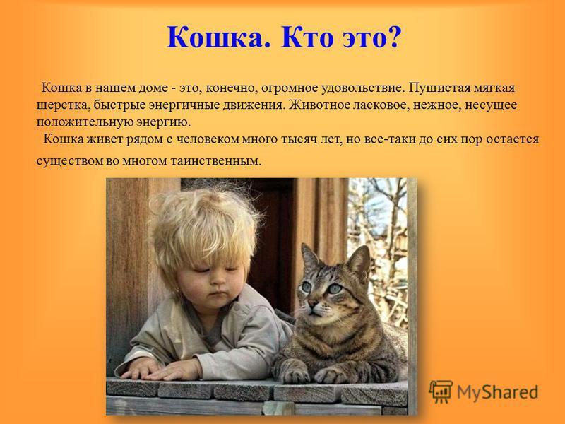 Кошка. Кто это? Кошка в нашем доме - это, конечно, огромное удовольствие. Пушистая мягкая шерстка, быстрые энергичные движения. Животное ласковое, нежное, несущее положительную энергию. Кошка живет рядом с человеком много тысяч лет, но все-таки до си