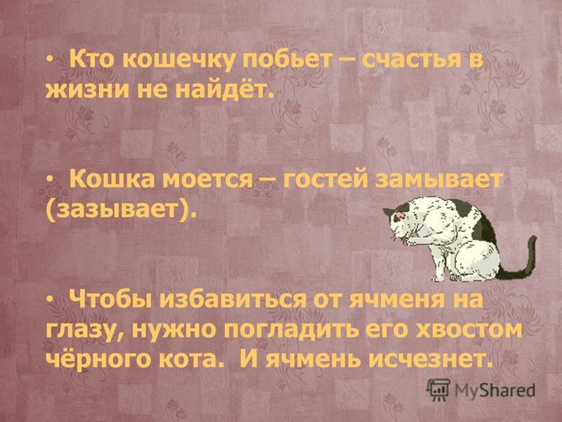 Кто кошечку побьет – счастья в жизни не найдёт. Кошка моется – гостей замывает (зазывает). Чтобы избавиться от ячменя на глазу, нужно погладить его хвостом чёрного кота. И ячмень исчезнет.