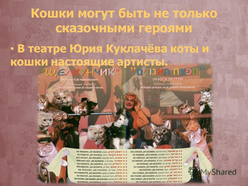Кошки могут быть не только сказочными героями В театре Юрия Куклачёва коты и кошки настоящие артисты.