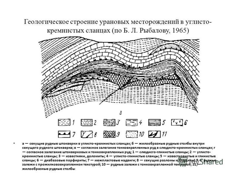Геологическое строение урановых месторождений в углисто- кремнистых сланцах (по Б. Л. Рыбалову, 1965) а секущие рудные штокверки в углисто-кремнистых сланцах; б жилообразные рудные столбы внутри секущего рудного штокверка; в согласное залегание тонко