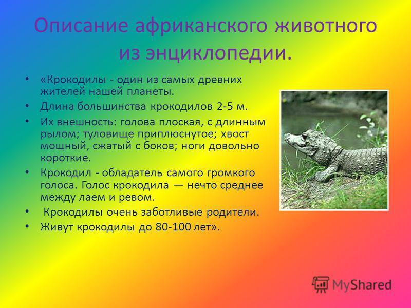 Описание африканского животного из энциклопедии. «Крокоделы - один из самых древних жителей нашей планеты. Длина большинства крокоделов 2-5 м. Их внешность: голова плоская, с длинным рылом; туловище приплюснутое; хвост мощный, сжатый с боков; ноги до