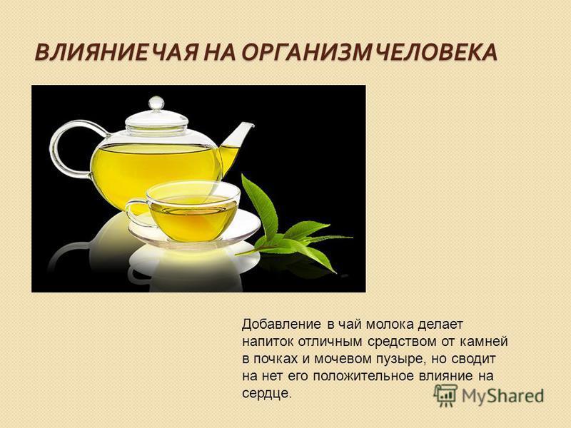 ВЛИЯНИЕ ЧАЯ НА ОРГАНИЗМ ЧЕЛОВЕКА Добавление в чай молока делает напиток отличным средством от камней в почках и мочевом пузыре, но сводит на нет его положительное влияние на сердце.