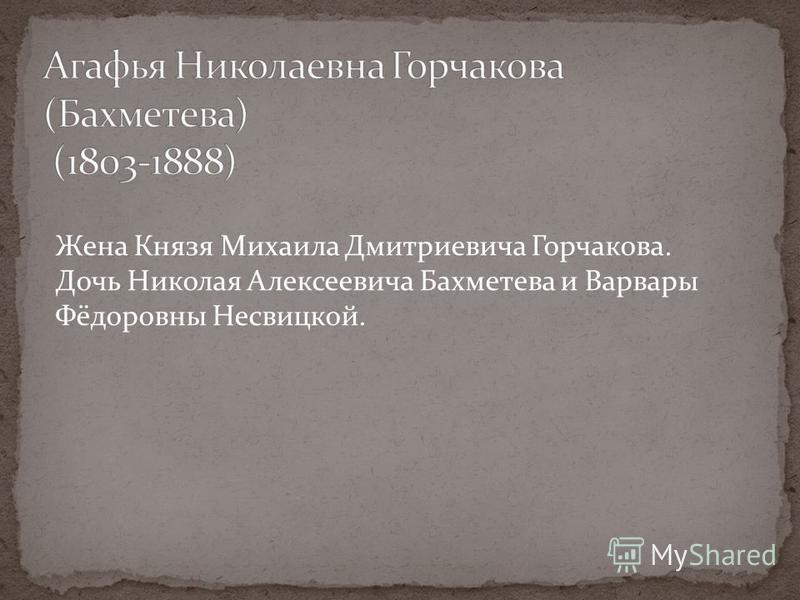 Жена Князя Михаила Дмитриевича Горчакова. Дочь Николая Алексеевича Бахметева и Варвары Фёдоровны Несвицкой.