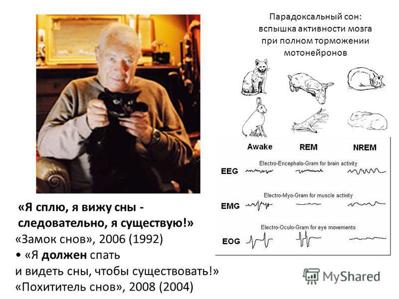«Я сплю, я вижу сны - следовательно, я существую!» «Замок снов», 2006 (1992) «Я должен спать и видеть сны, чтобы существовать!» «Похититель снов», 2008 (2004) Парадоксальный сон: вспышка активности мозга при полном торможении мотонейронов