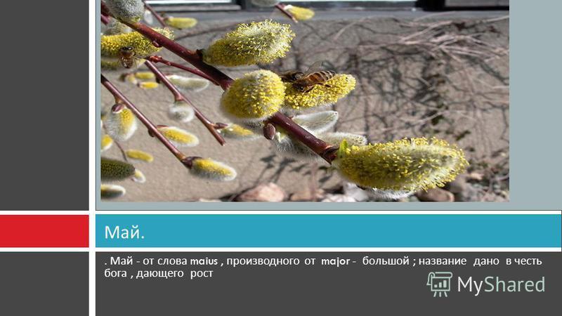 . Май - от слова maius, производного от major - большой ; название дано в честь бога, дающего рост Май.