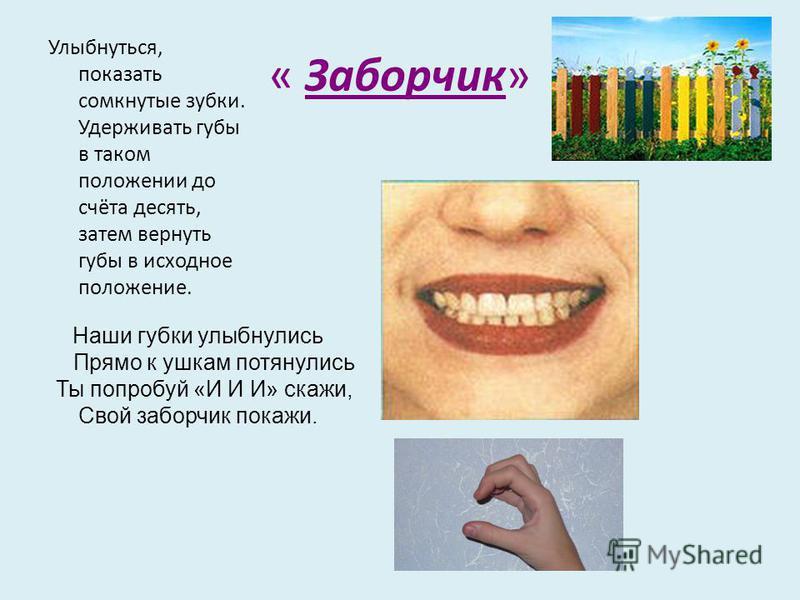 « Заборчик» Улыбнуться, показать сомкнутые зубки. Удерживать губы в таком положении до счёта десять, затем вернуть губы в исходное положение. Наши губки улыбнулись Прямо к ушкам потянулись Ты попробуй «И И И» скажи, Свой заборчик покажи.