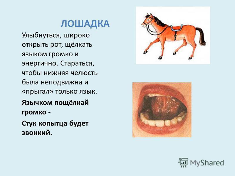 ЛОШАДКА Улыбнуться, широко открыть рот, щёлкать языком громко и энергично. Стараться, чтобы нижняя челюсть была неподвижна и «прыгал» только язык. Язычком пощёлкай громко - Стук копытца будет звонкий.