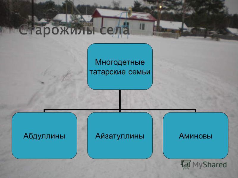 Многодетные татарские семьи Абдуллины АйзатуллиныАминовы