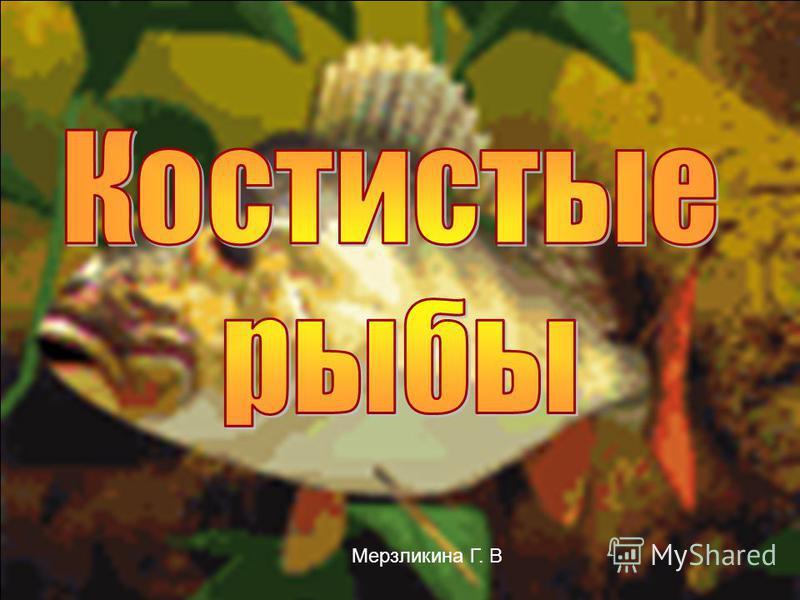 Мерзликина Г. В