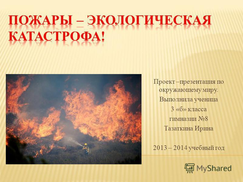 Проект –презентация по окружающему миру. Выполнила ученица 3 «б» класса гимназии 8 Тазаткина Ирина 2013 – 2014 учебный год