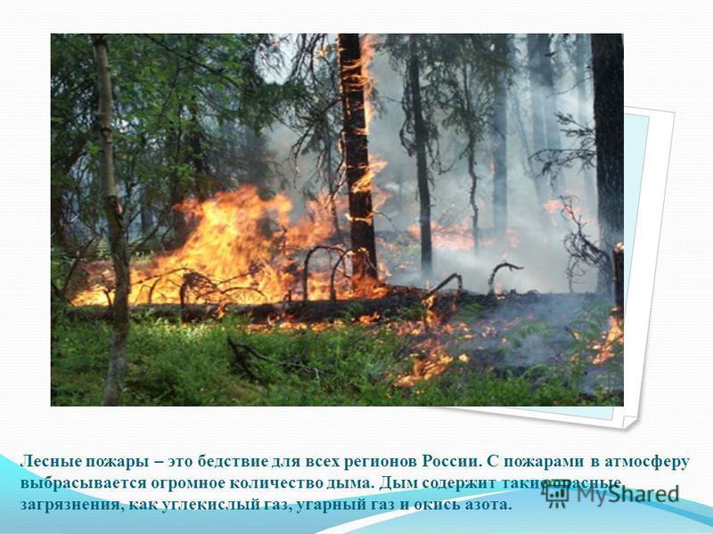 Лесные пожары – это бедствие для всех регионов России. С пожарами в атмосферу выбрасывается огромное количество дыма. Дым содержит такие опасные загрязнения, как углекислый газ, угарный газ и окись азота..