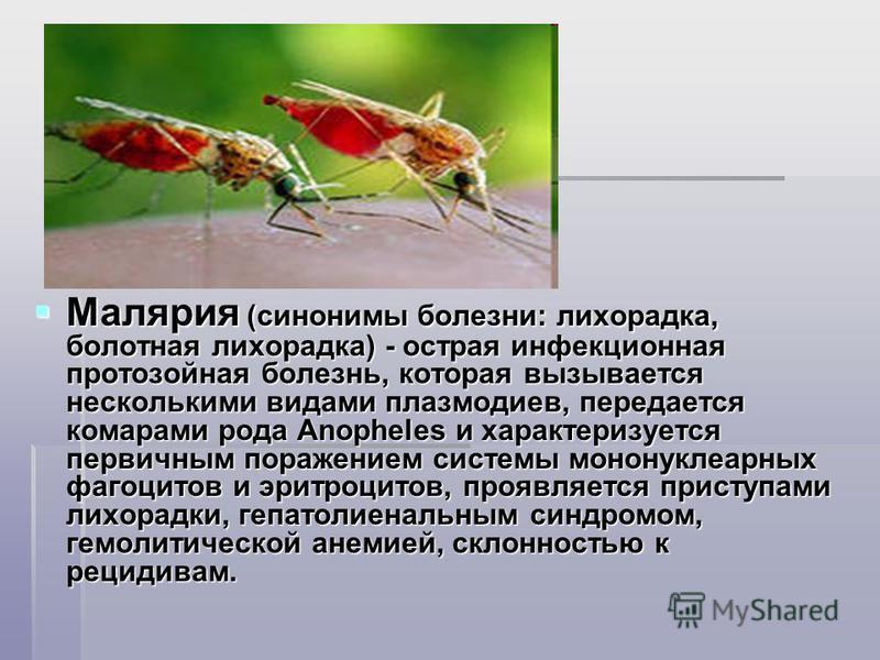 Малярия (синонимы болезни: лихорадка, болотная лихорадка) - острая инфекционная протозойная болезнь, которая вызывается несколькими видами плазмодиев, передается комарами рода Anopheles и характеризуется первичным поражением системы мононуклеарных фа
