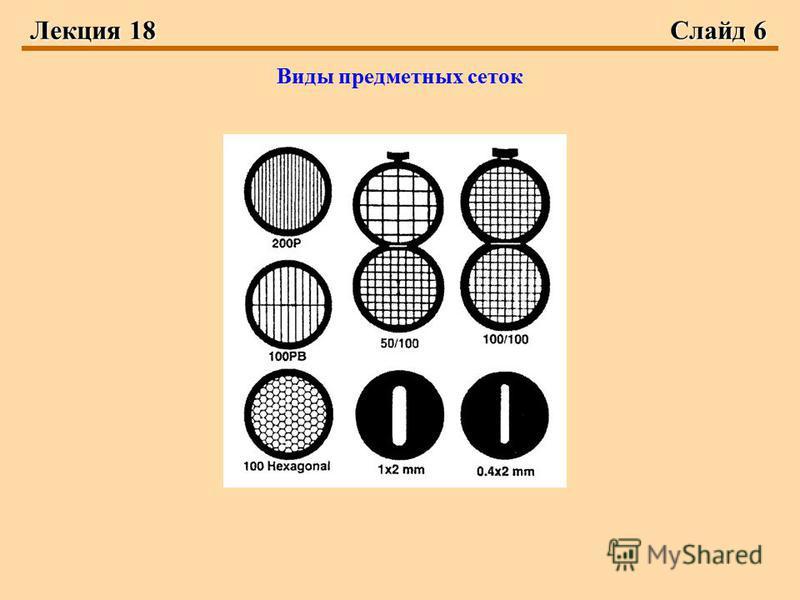 Лекция 18Слайд 6 Виды предметных сеток