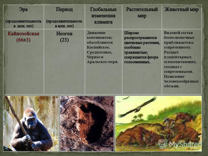 Движение континентов; обособляются Каспийское, Средиземное, Черное и Аральское моря. Видовой состав беспозвоночных приближается к современному. Расцвет плацентарных млекопитающих, сходных с современними. Появление человекообразных обезьян.
