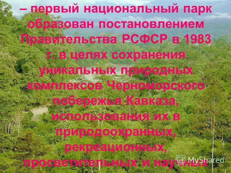 Сочинский национальный парк – первый национальный парк образован постановлением Правительства РСФСР в 1983 г. в целях сохранения уникальных природных комплексов Черноморского побережья Кавказа, использования их в природоохранных, рекреационных, просв