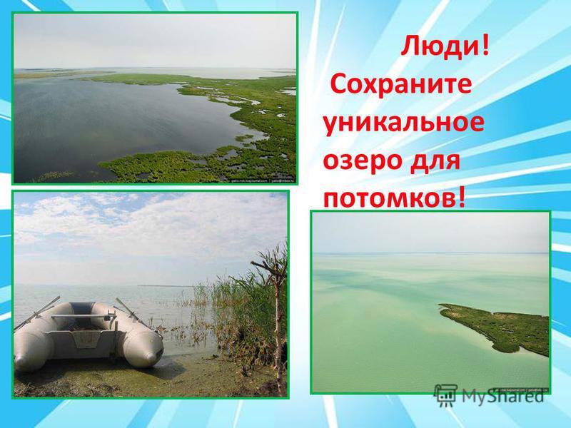 Люди! Сохраните уникальное озеро для потомков!