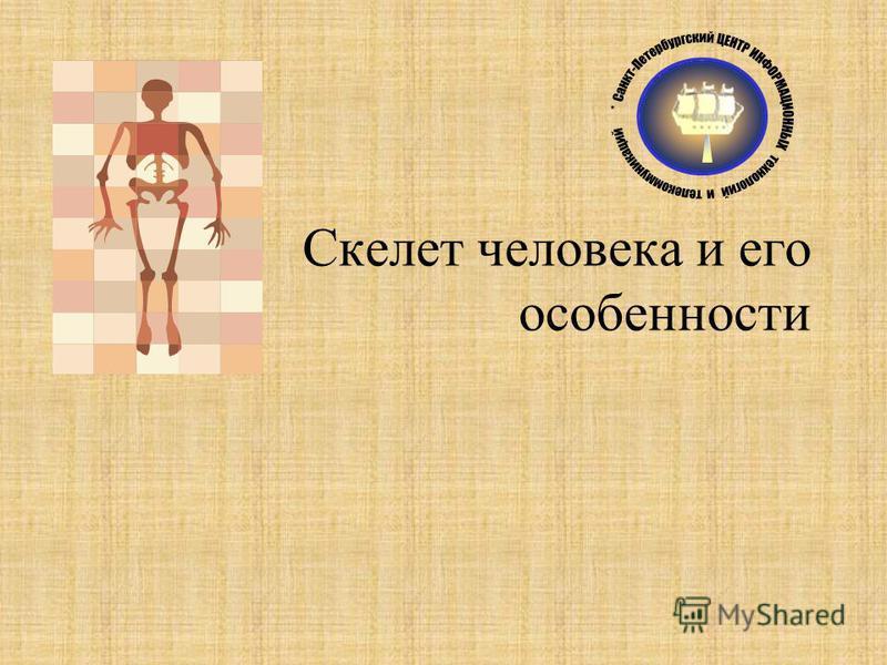 Скелет человека и его особенности