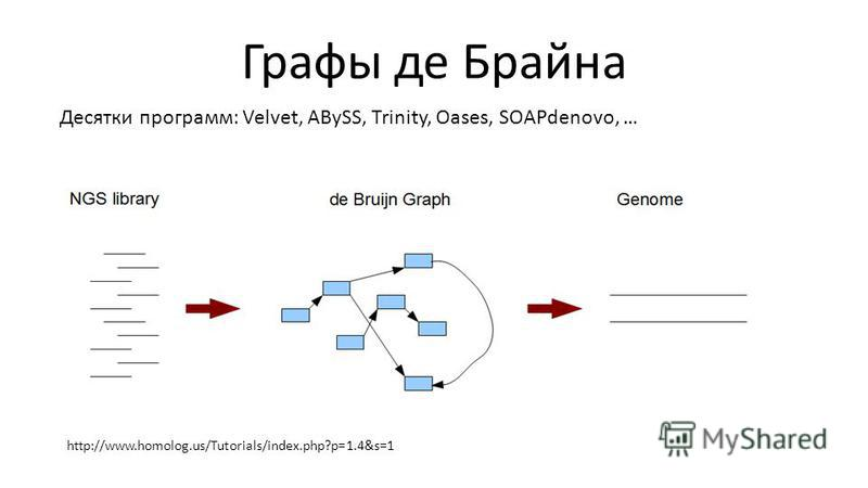 Графы де Брайна Десятки программ: Velvet, ABySS, Trinity, Oases, SOAPdenovo, … http://www.homolog.us/Tutorials/index.php?p=1.4&s=1