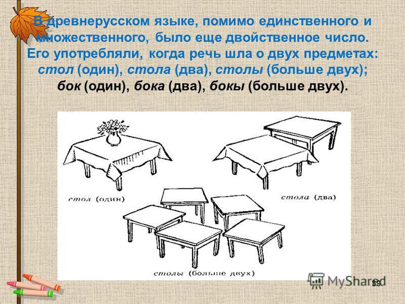 В древнерусском языке, помимо единственного и множественного, было еще двойственное число. Его употребляли, когда речь шла о двух предметах: стол (один), стола (два), столы (больше двух); бок (один), бока (два), бокы (больше двух). 39
