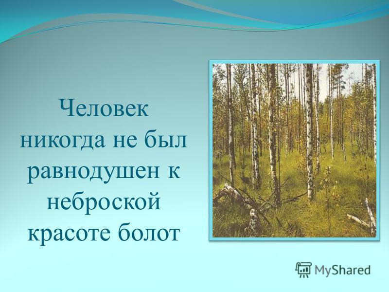 Человек никогда не был равнодушен к неброской красоте болот
