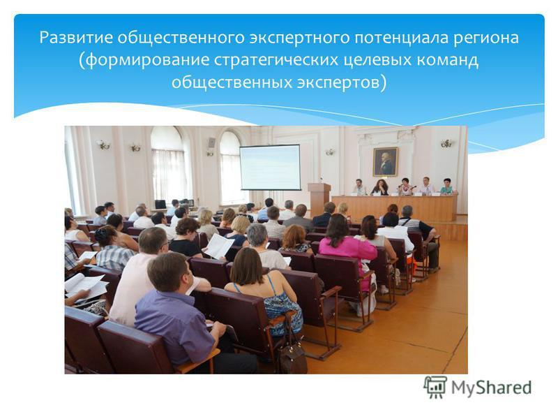 Развитие общественного экспертного потенциала региона (формирование стратегических целевых команд общественных экспертов)