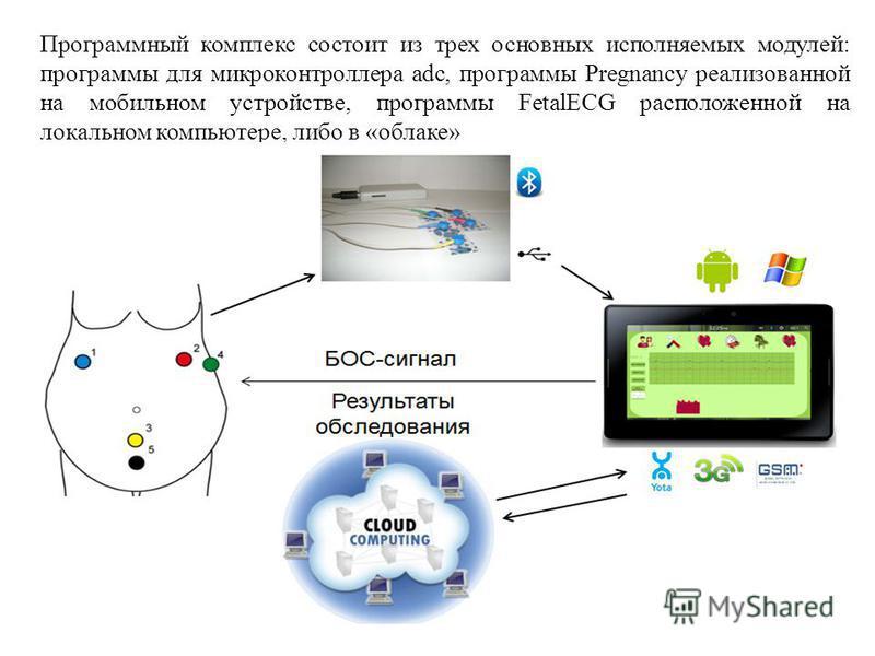 Программный комплекс состоит из трех основных исполняемых модулей: программы для микроконтроллера adc, программы Pregnancy реализованной на мобильном устройстве, программы FetalECG расположенной на локальном компьютере, либо в «облаке»