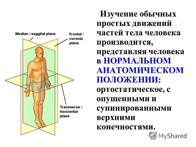 Изучение обычных простых движений частей тела человека производится, представляя человека в НОРМАЛЬНОМ АНАТОМИЧЕСКОМ ПОЛОЖЕНИИ: ортостатическое, с опущенными и супинированными верхними конечностями.