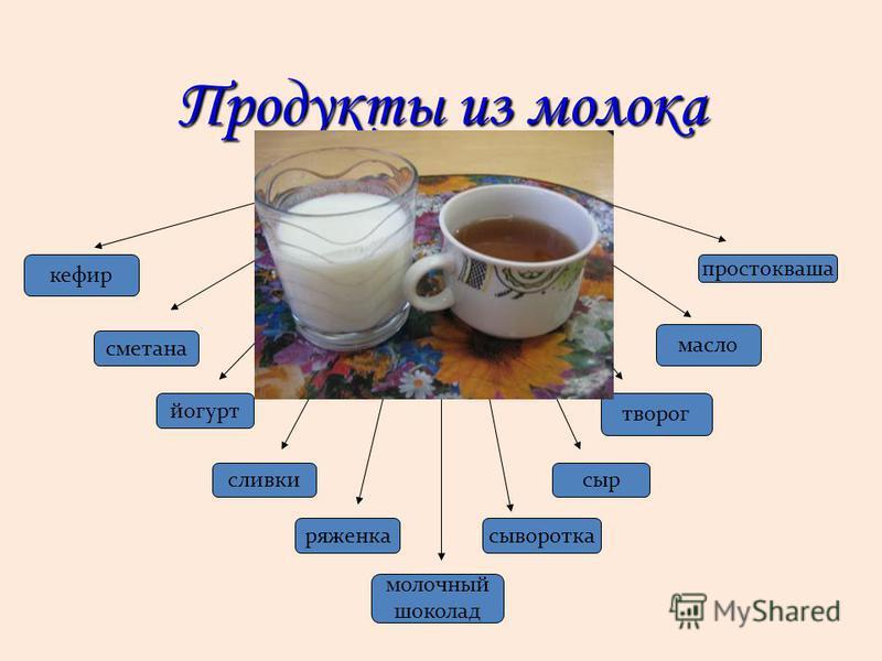 Продукты из молока кефир творог сливки сметана масло йогурт сыворотка молочный шоколад сыр ряженка простокваша