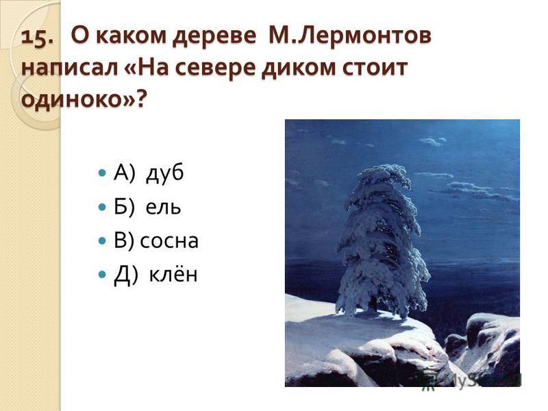 15. О каком дереве М. Лермонтов написал « На севере диком стоит одиноко »? А ) дуб Б ) ель В ) сосна Д ) клён